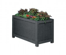 Rectangular Intrecci planter